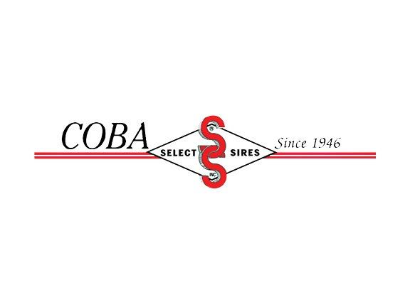 COBA Select Sires